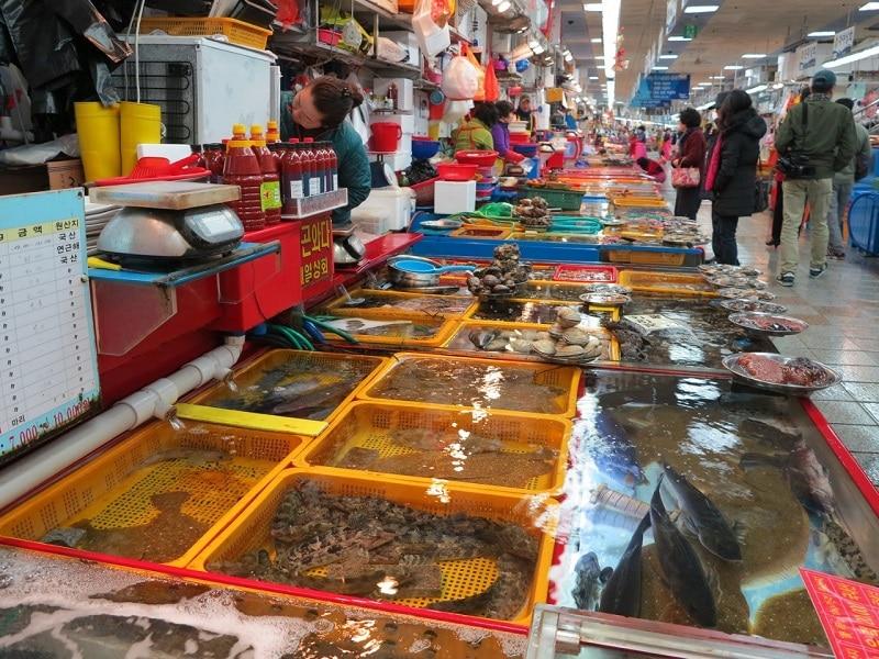 Chợ hải sản Sầm Sơn mới nổi