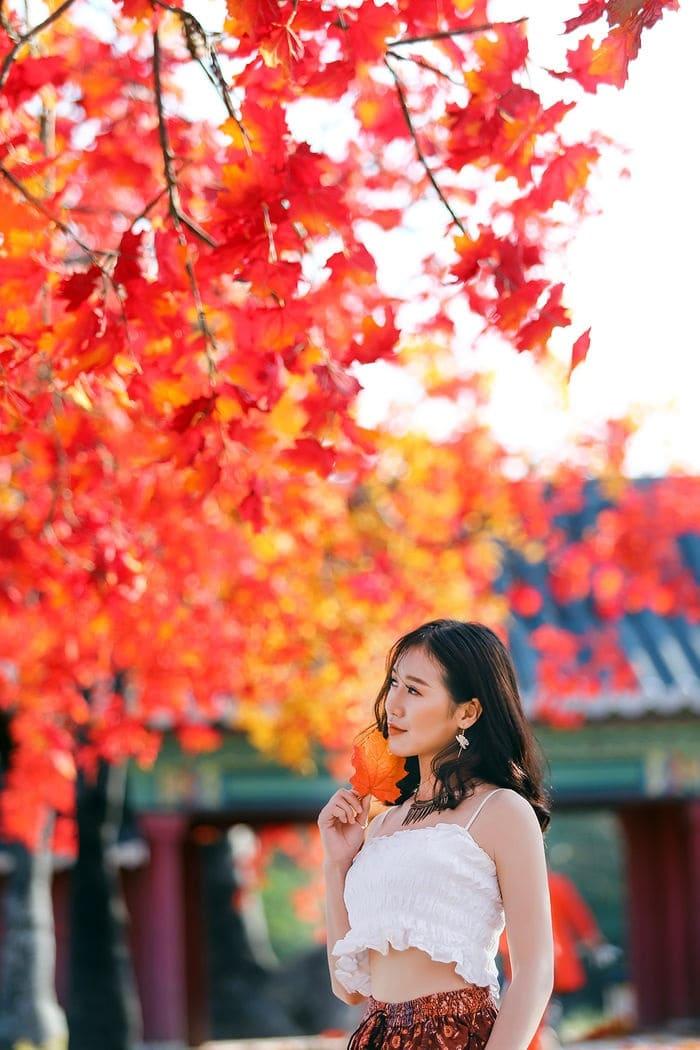 Những lưu ý khi đi con đường lá đỏ ở Hà Nội