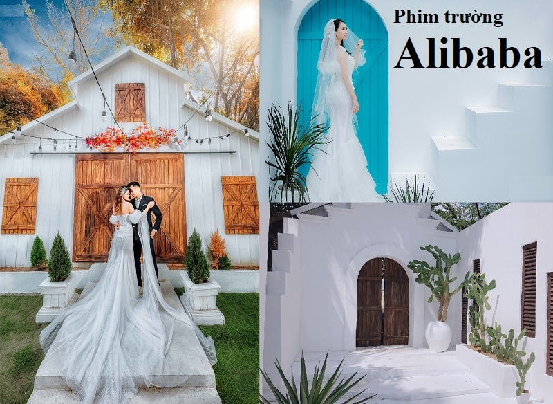 Review phim trường Alibaba từ A-Z